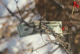 Откуда берутся стыд и неловкость, когда речь заходит о деньгах